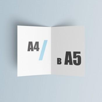 Буклет А5 (210*148 мм.)